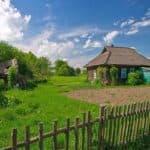 Современный бизнес на селе — идеи с минимальными вложениями